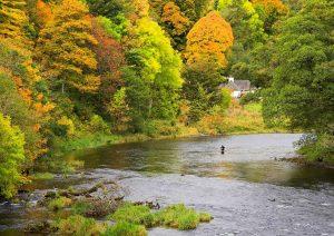 Fishing on the Tweed